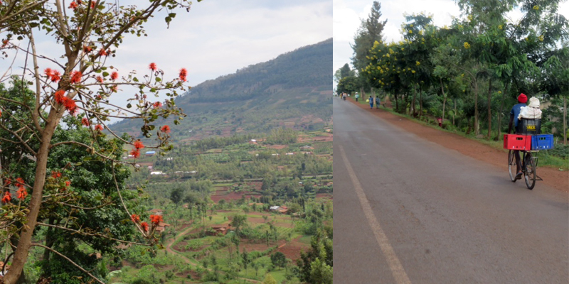 Rwandan Landscape and Bicycle