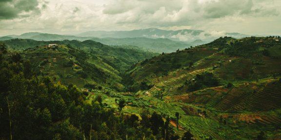 Visit Rwanda with Wellspring, Next Trip: February 2018