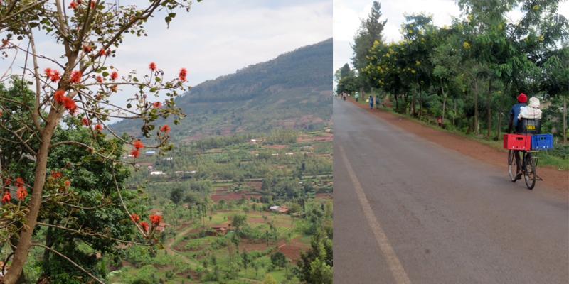 Rwandan Landscape and Bicycle